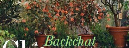Backchat Magazine